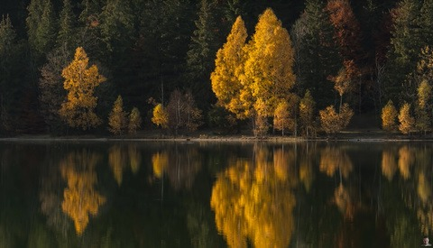 30 Great Tips and Ideas for Photography in Autumn
