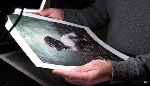A Straightforward Guide to Color Management for Creating Better Photo Prints