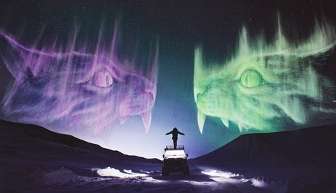 Artists Create Giant Aurora Alien Cats