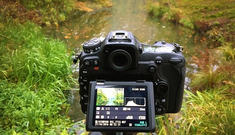Use the Histogram on Your Camera to Your Advantage