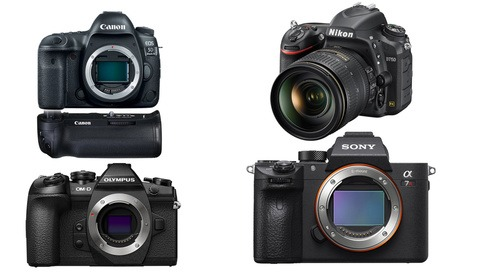 Save Up to $1,200 on the Most Popular Cameras From Canon, Nikon, Sony, and Olympus