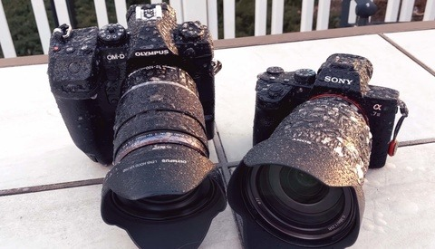 Is the Olympus OM-D E-M1X Doomed to Fail or Crazy Enough to Work?
