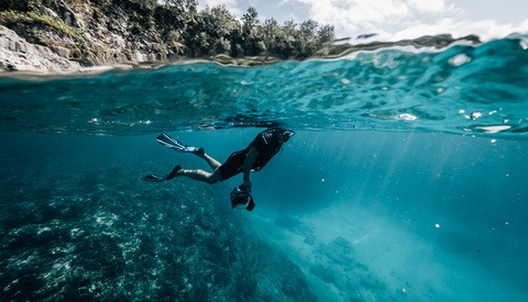Proper Etiquette for Underwater Photographers