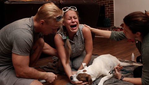 Heartbreaking Photo Series Documents the Raw Final Moments Owners Spend With Their Dying Pets
