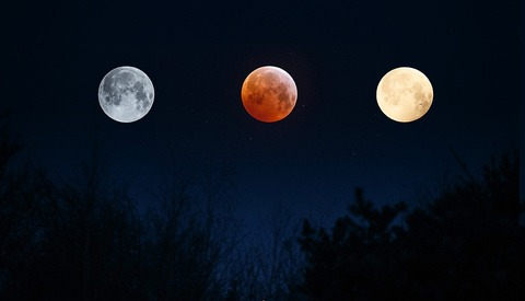 Was the Superbloodwolfmoon Really That Spectacular From a Photographer Point of View?