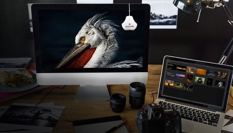How to Calibrate Your Monitor With the Datacolor
