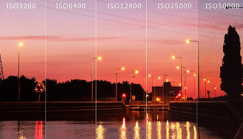 Do You Know the Maximum Acceptable ISO Value for Your Camera?