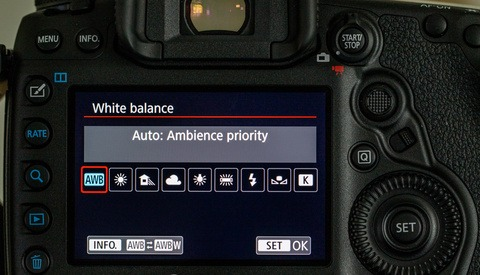 Never Trust Auto White Balance for Your Photography