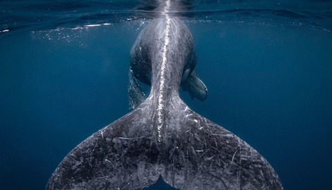 National Geographic Travel Photo Contest Now Open