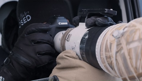 Use a Bean Bag to Photograph Wildlife From a Vehicle
