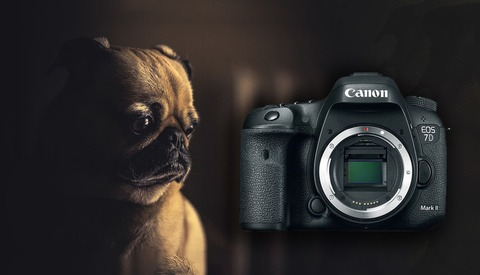 Is This the End of the Canon EOS 7D Series of Cameras?