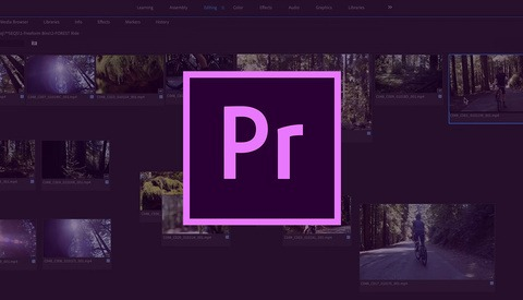 Adobe Premiere Pro 2019.1 Update Gets New Tools and Improvements