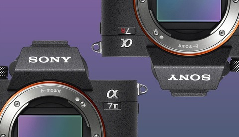 Sony Releases Firmware 3.0 for a7R III and a7 III Cameras With Animal Eye AF, Time-Lapse Mode