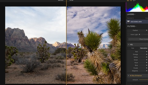 The Latest Luminar 3 Update Adds More Powerful AI Features