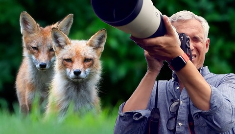 Wildlife Photography: How to Get Closer to Animals