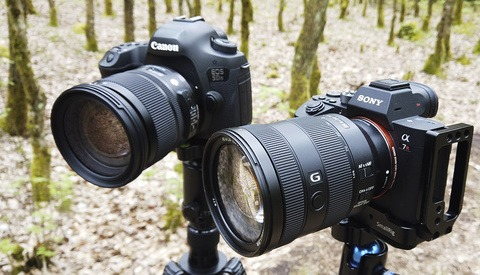 A Sharpness Test Between the Canon 5Ds and Sony a7R III