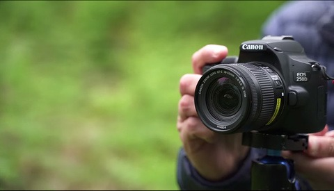 What Can You Accomplish With a Barebones DSLR?