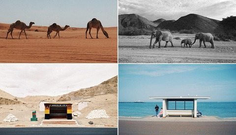 Celebrating World Photography Day Across the World Through Diptychs That Bring Us Together