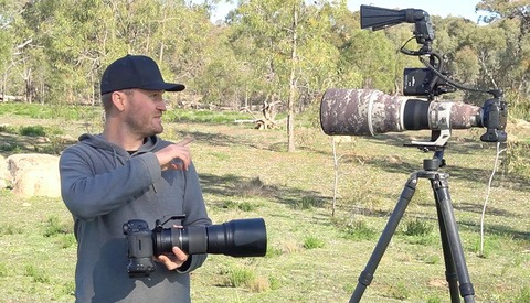 $20,000 Versus $2,000 Bird Photography Setup