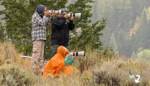 Thousands of Images, Four Photographers, One Trip