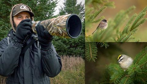 Bird Photography BTS: Planning and Execution Basics