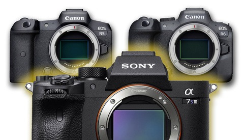 If It Wants to Beat the Canon r5 and r6, the Sony a7s III Just Needs to Shoot 4k 60p Without Overheating