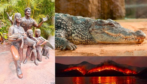 Crikey! Steve Irwin's Son Wins Prestigious Photography Award