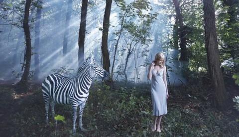 """[BTSV] Drew Gardner Shoots """"The Zebra"""""""