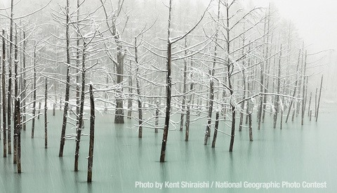 Spectacular Entries in National Geographic Photography Contest