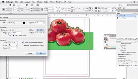 Freshen Up Your Adobe InDesign Skills