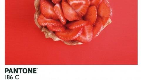 Pantone Food Photography