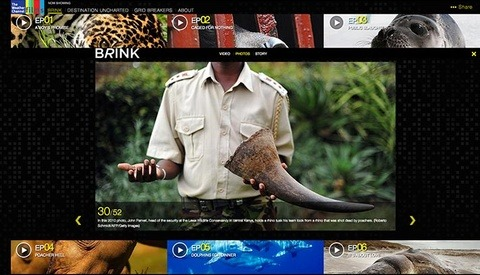 """Brink"" Gripping Stories Of Endangered Animals From Weather Films"
