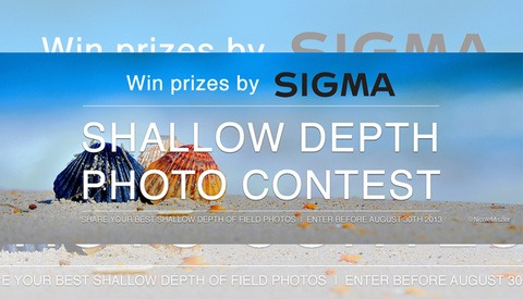 Win the Sigma 35mm f/1.4 or 17-70mm with Your Best Shallow DOF Photo
