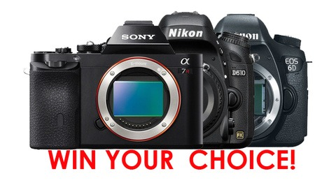 Nikon D610 / Canon 6D / Sony A7 Giveaway Winner
