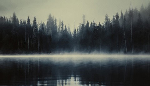 'Lost Lake': The Ethereal, Foggy Lanscapes of British Columbia
