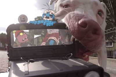 Watch This Amazing GoPro Joyride That's Part Animation Part GoPro Footage