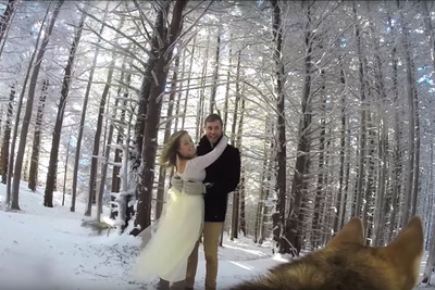 Couple Asks Their Dog to Film Their Wedding Day