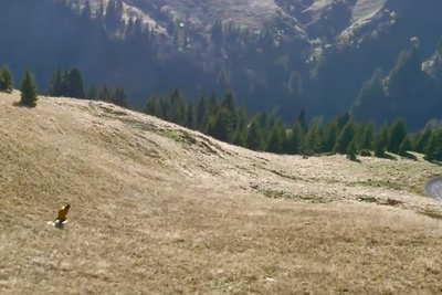 Candide Thovex, The Skier Who Doesn't Wait for Winter