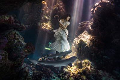 Model Tied Down In Underwater Cave with Sharks Creates Stunning Imagery