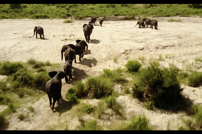 Check Out This Gorgeous Drone Footage of South Africa