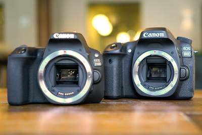 Canon SL2/200D Vs. Canon 80D: Best Entry-Level Camera Comparison