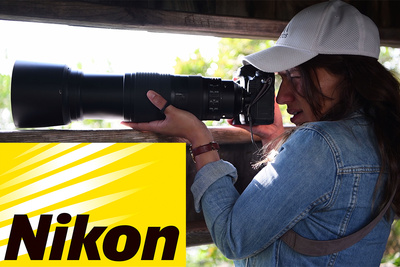 Is The Nikon D850 The Best Wildlife Camera Too?