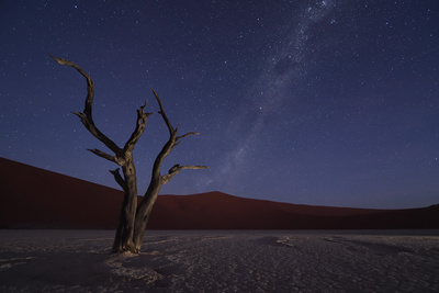 Behind the Scenes of an 8K D850 Time-Lapse in the African Desert