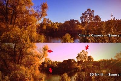 Video Comparison Of The Blackmagic Cinema Camera Vs The Canon 5D III