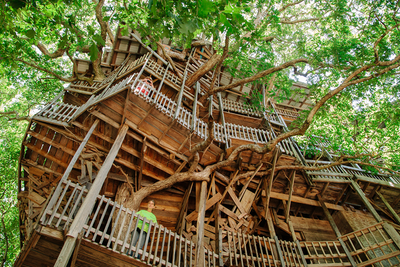 World's Largest Treehouse - A Photo Story by David Walter Banks