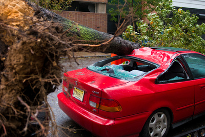On the Ground: The FS Perspective of Hurricane Sandy