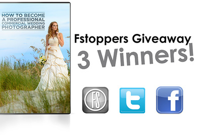 And The Three Wedding Tutorial Winners Are...