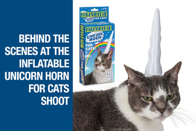 BTS Shoot - Inflatable Cat Unicorn Horn