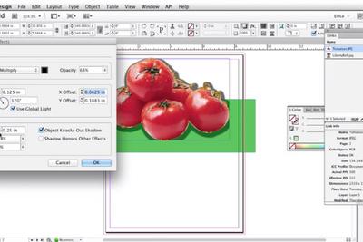 Freshen Up Your Adobe InDesign Skills