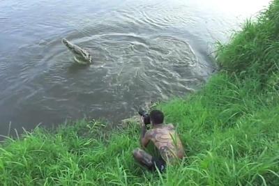 Photographer Narrowly Escapes Crocodile Attack